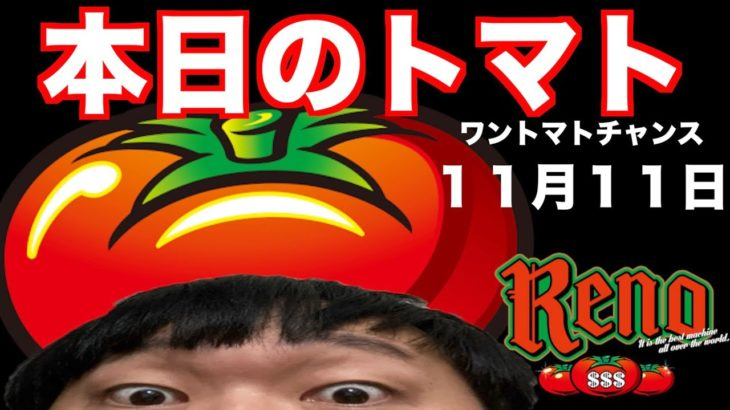 本日のトマト、スロット【リノ】、ワントマトチャンス、11月11日