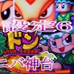 緑ドンviva情熱南米編 設定6 パチスロ スロット どんちゃんシリーズ