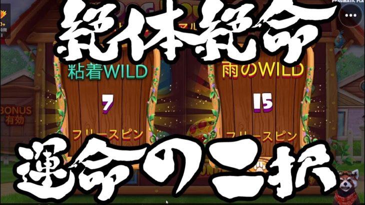 #155【オンラインカジノ|スロット】ワンチャン絶体絶命!粘着WILD?雨のWILD?どっち派???