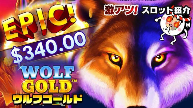 長年愛され続ける超人気スロット「WOLF GOLD」巨大化するシンボルとジャックポットボーナスに注目!【激アツスロキャンプVol.17】