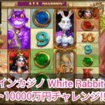 【BONS】オンラインカジノ white rabbit スロット100ドルチャレンジ!雑談大歓迎
