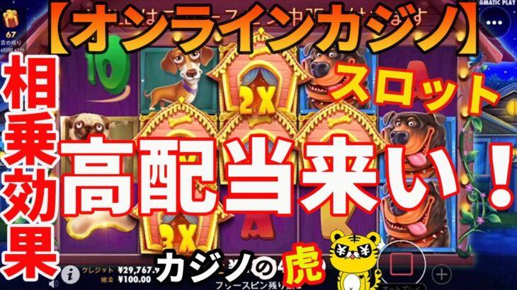 #242【オンラインカジノ|スロット】相乗効果の高配当来い!|THE DOG HOUSE
