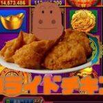 【ゴールデンホイヤー】鶏スロット